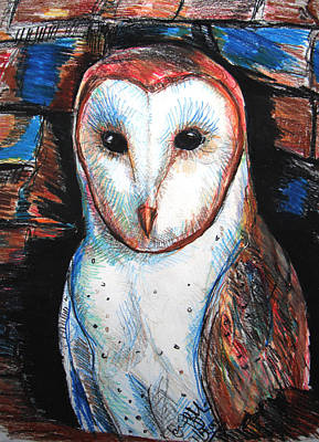 Barn Owl  Art Print by Jon Baldwin  Art