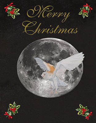 Mixed Media - Barn Owl Merry Christmas by Eric Kempson