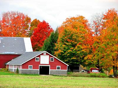Barn Red Art Print