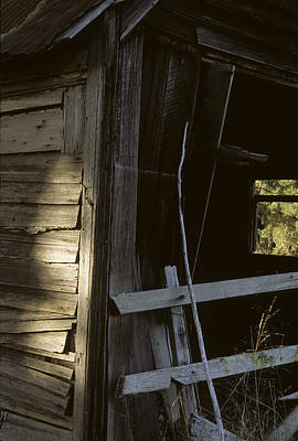 Photograph - Barn Ruin Santa Cruz Mountains by John Farley