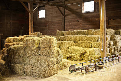 Stables Photograph - Barn With Hay Bales by Elena Elisseeva