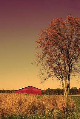 Photograph - Barn Wood by Kate Gainard Monroe