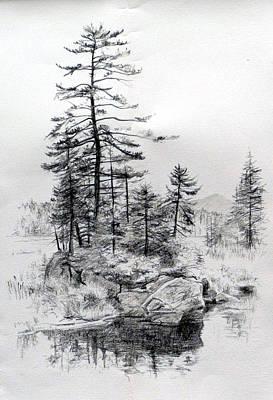 Adirondack Drawing - Barnum Pond by Frances Gaffney