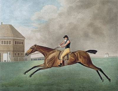 Horse Racing Photograph - Baronet by George Stubbs