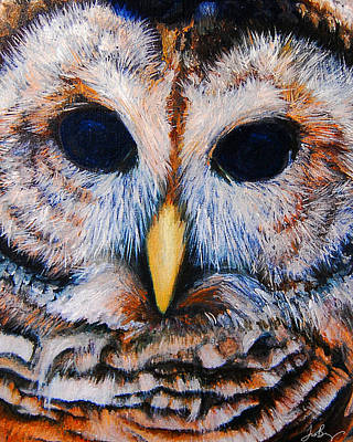 San Diego Artist Painting - Barred Owl by Timothy Benz