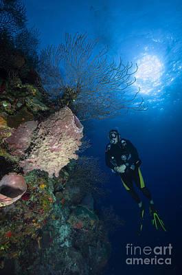 Barrel Sponge And Diver, Belize Art Print by Todd Winner