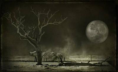 Photograph - Barren Land by Kym Clarke