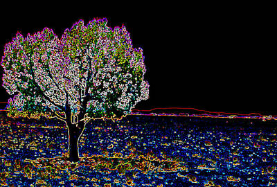 Digital Art - Barren Tree by Charles Benavidez