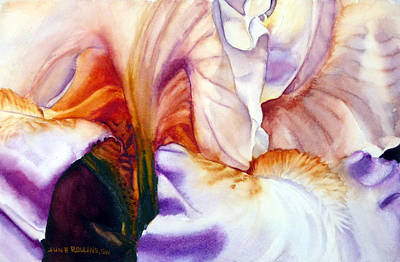 Painting - Bashful Beauty by June Rollins