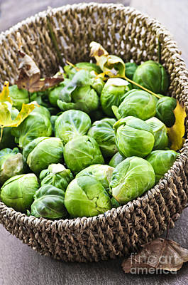 Basket Of Brussels Sprouts Art Print by Elena Elisseeva