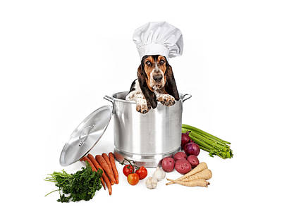 Basset Hound Dog In Big Cooking Pot Art Print by Susan Schmitz