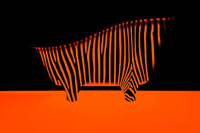 Photograph - Bath With Zebra Stripes Orange by Radoslav Nedelchev