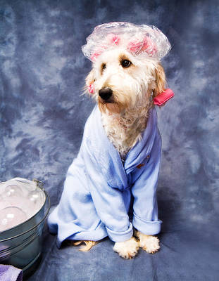 Photograph - Bathtime For Kati by Trudy Wilkerson