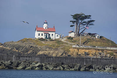 Photograph - Battery Point Lighthouse by Jim And Emily Bush