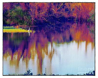 Photograph - Bayou With Egret by Judi Bagwell