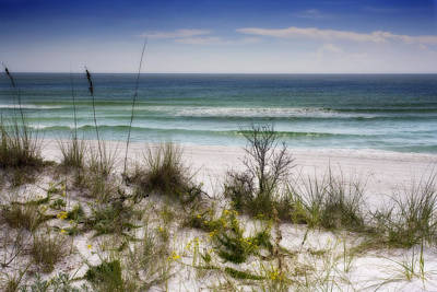 Photograph - Beach And Dunes by Al Hurley