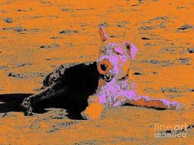 Beach Dog 8 Art Print by Nina Kaye