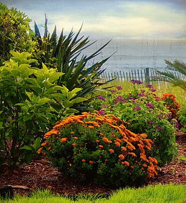 Art Print featuring the photograph Beach Garden by Mary Timman
