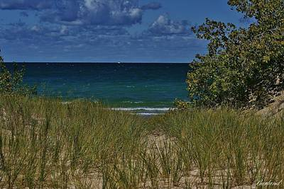 Photograph - Beach Grass 1 by Burland McCormick