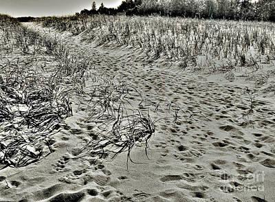 Beach Path Art Print by Lin Haring