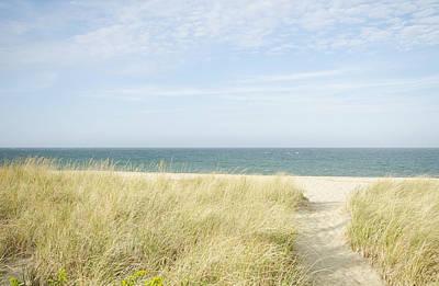 Beach Path, Nantucket Art Print