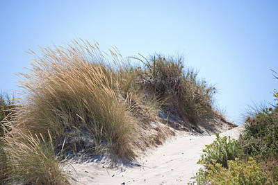 Photograph - Beach Sand Dunes I by Michelle Wrighton
