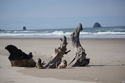 Photograph - Beach Sculpture by Angi Parks
