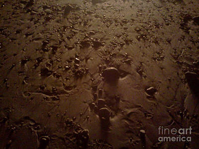 Beach Stones At Night Art Print by Wendy Marelli