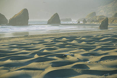 Beach With Dunes And Seastack Rocks Art Print by Skip Brown