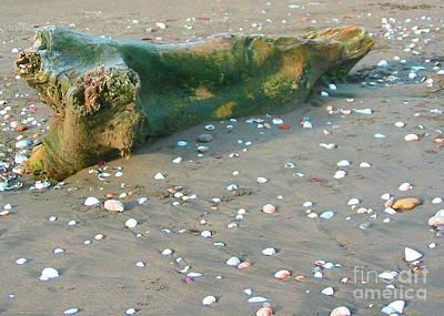 Beachcombing Art Print