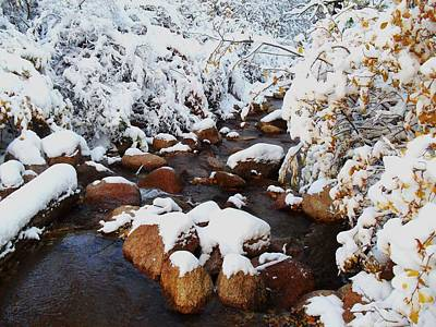 Photograph - Bear Creek In Snow by Clarice  Lakota
