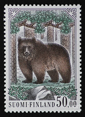 Photograph - Bear Vintage Postage Stamp Print by Andy Prendy