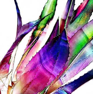 Southwest Photograph - Beautiful Cactus by Cindy Edwards