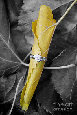 Leaf Engagement Ring Photograph - Beautiful Engagement by Brooke Roby