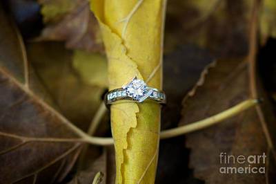 Gold Leaf Ring Photograph - Beautiful Engagement Three by Brooke Roby