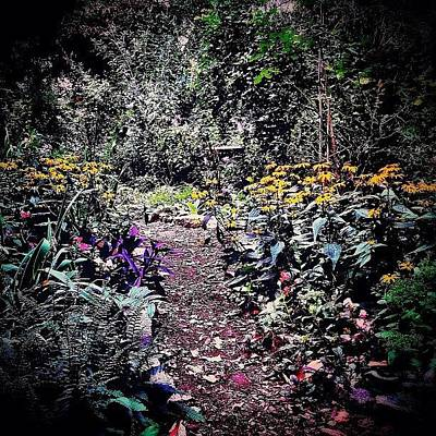 Landscape Photograph - Beautiful Garden Path - New York City by Vivienne Gucwa