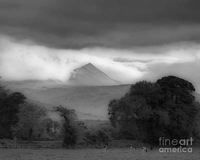 Photograph - Beautiful Killarney Mountains Ireland Black And White by Nature Scapes Fine Art