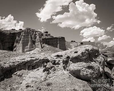 Photograph - Beautiful New Mexico by Sherry Davis