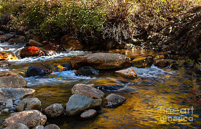 Photograph - Beautiful Stream by Robert Bales