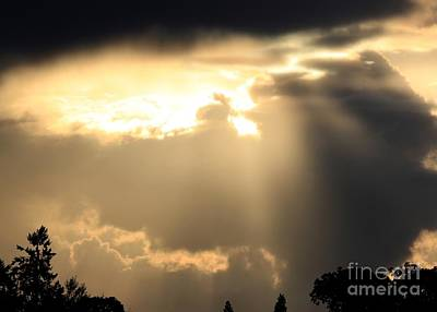 Photograph - Beautiful Sunbreak by Erica Hanel