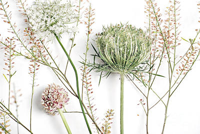 Beautiful Weeds Art Print