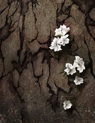 Struggling Digital Art - Beauty From Brokenness by Rachel Christine Nowicki