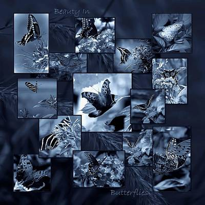 Blue Swallowtail Photograph - Beauty In Butterflies Viii by DigiArt Diaries by Vicky B Fuller