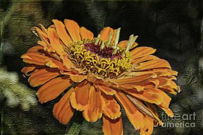 Petals Art Mixed Media - Beauty In Orange Petals by Deborah Benoit