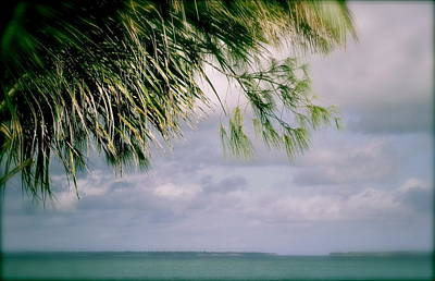 Photograph - Beauty Of Zanzibar by Joe  Burns