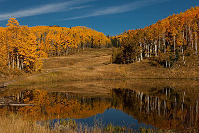 Photograph - Beaver Pond Reflection by Peter Skiba