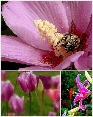 Photograph - Bee And Tulips by Priscilla Richardson