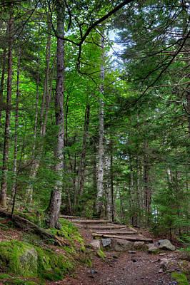 Beech Mountain Trail Acadia Original