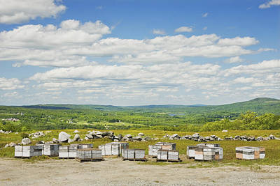 Photograph - Beehives In A Maine Blueberry Field by Keith Webber Jr