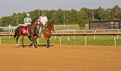 Blood Bay Horse Photograph - Before The Race by Betsy Knapp